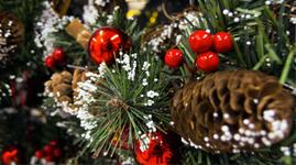 Pynt og diverse til jul