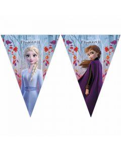 Vimpel banner med Frost 2