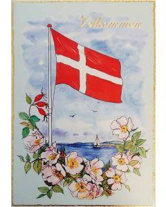 Velkomstsange - Flag ved hav